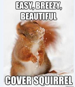 coversqu